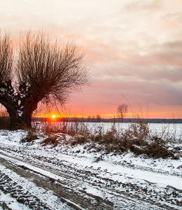Łąki Oborskie2 FOT. P. BRYŁKA Zima