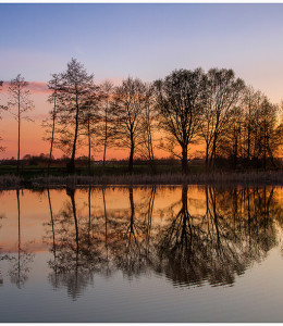 Bielawa_9334 FOT. P. BRYŁKA jesien